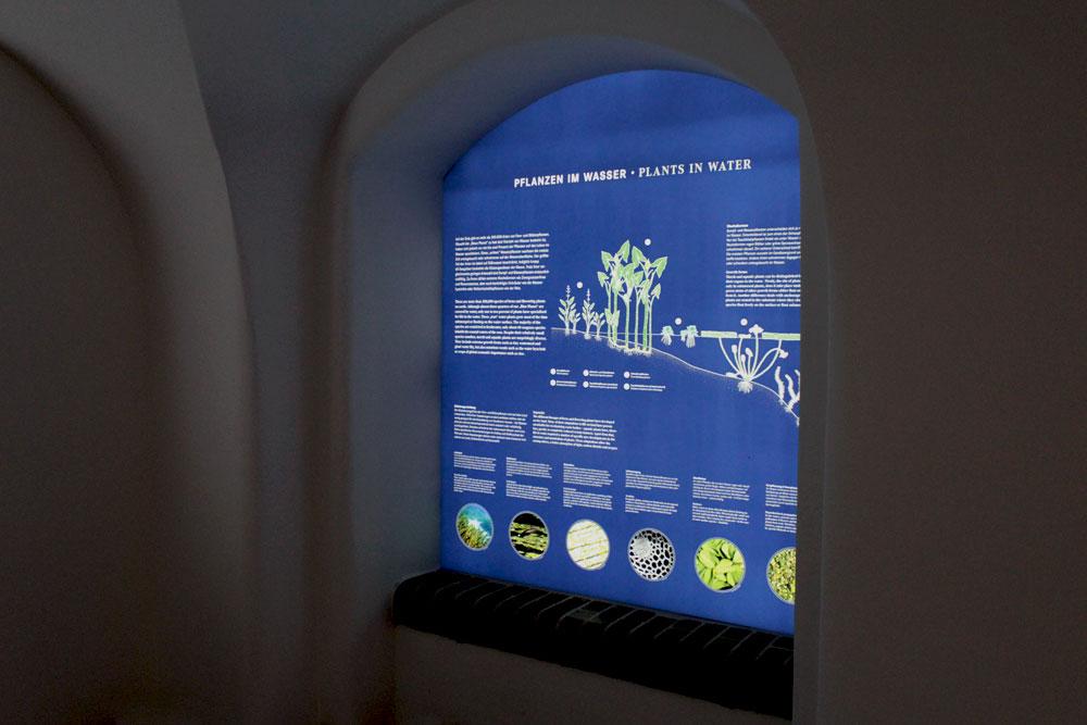 großes Light-Panel im Victoria-Haus, Botanischer Garten Berlin Dahlem